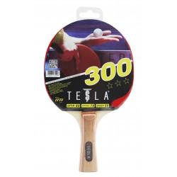 TESLA R300 BAT