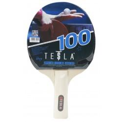 TESLA R100 BAT